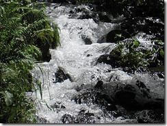 Wahkeena Falls1